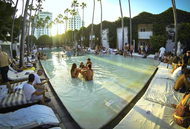 Privileged Sundays at The Delano Miami Beach