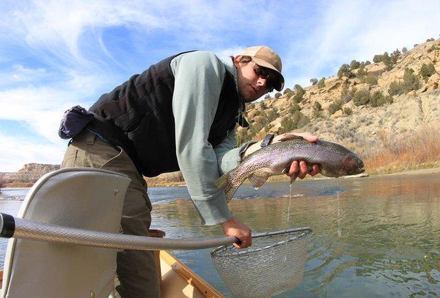Gore creek fishing