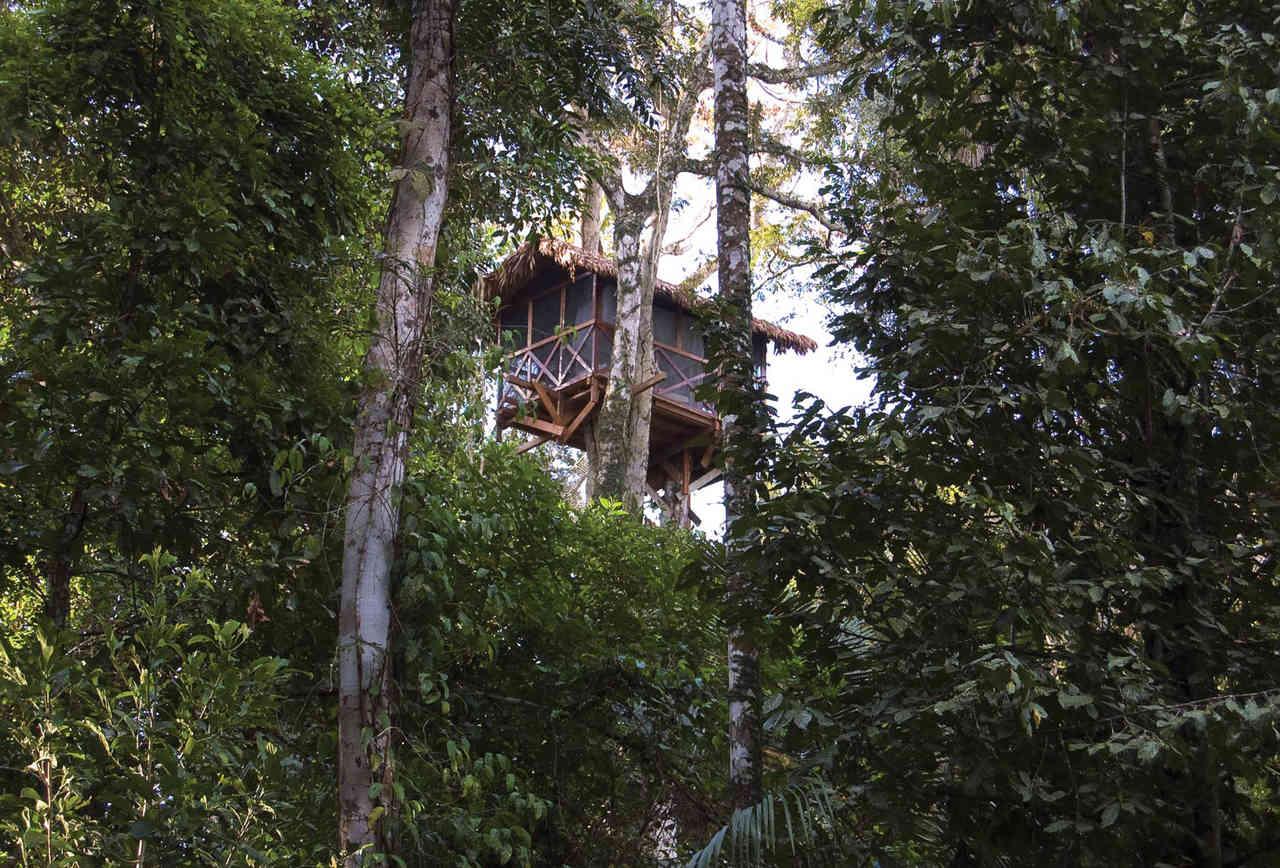 Inkaterra Reserva Amazonica