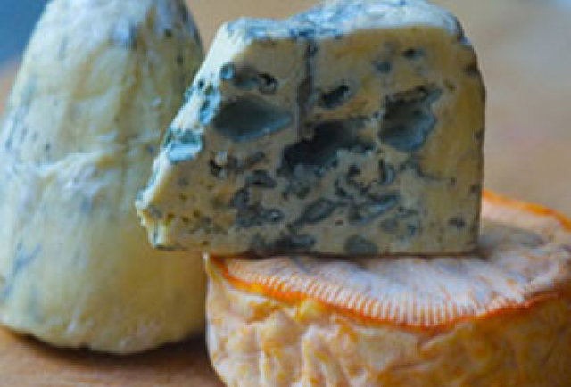 Stinky Cheese Festival