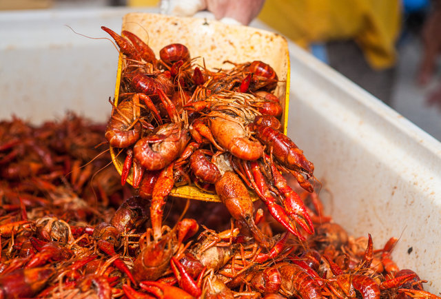 The Perfect Crawfish Boil - How To Boil Crawfish - Thrillist