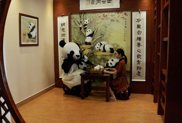 high tea with panda