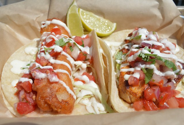local experts surfers rank best fish tacos in san diego