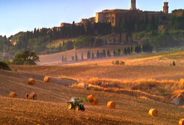 Olive Garden Trivia About Darden 39 S Italian Chain