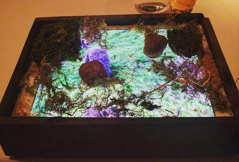 San Francisco Restaurant Quince Serves Mushrooms on iPads