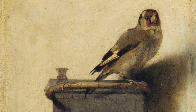 Pájaro del estado de New Jersey: Goldfinch del este (Carduelis tristis)
