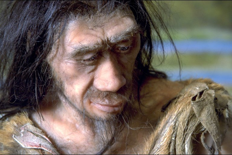 Find pushes back hominin arrival in the Philippines seven hundred thousand years