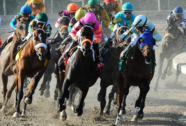 Horse Racing Betting Suggestions - Know It All Right here!