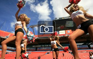 Dolphins Cheerleader Tryouts