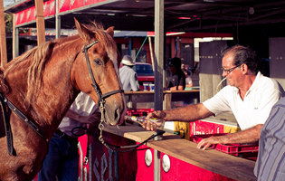 Horses and booze join forces for your pleasure