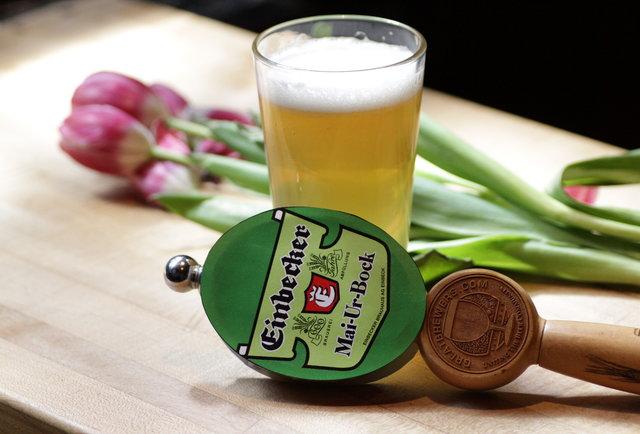 Einbecker Brewery's Mai-Ur-Bock
