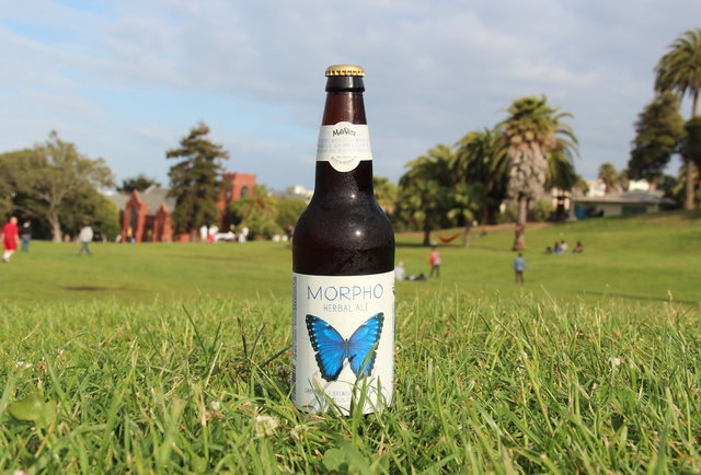 Cerveceria de MateVeza's Morpho-Summer Beers: The 150 You Need to Drink Before September