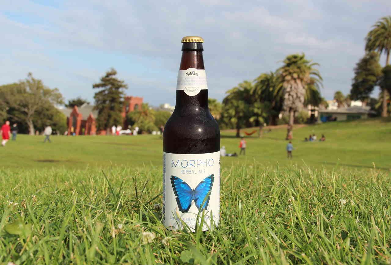 Cerveceria de MateVeza's Morpho