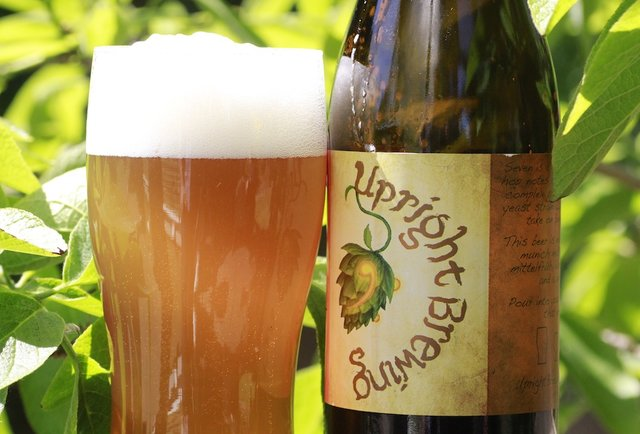 Upright Pure Wit-Summer Beers: The 150 You Need to Drink Before September
