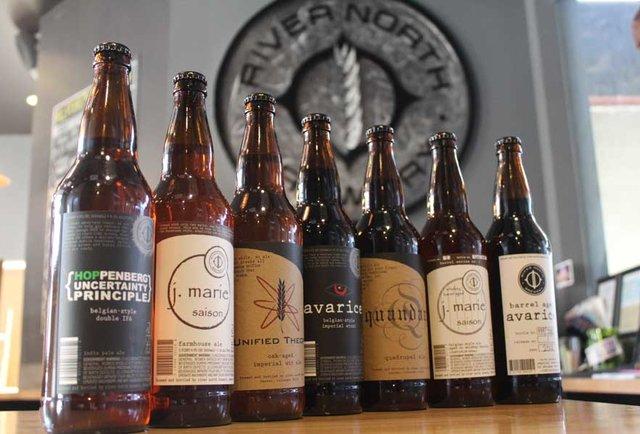 Beer bottle lineup