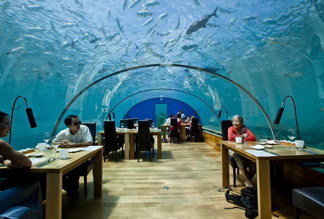 undersea dining room