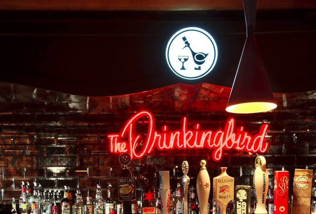 The Drinkingbird