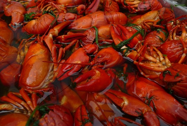 Swedish Crayfish Boil Party