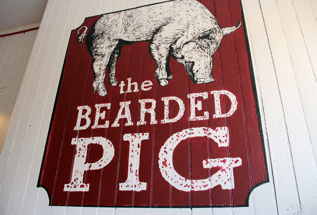 The Bearded Pig