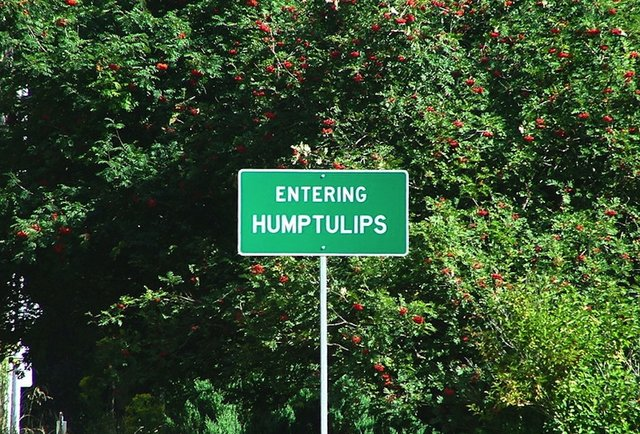 humptulips sex personals Welcome to the best online port angeles dating scene mingle2com is full of port angeles single girls seeking dates, sex, boyfriends, and fun finding single girls in port angeles is easy with mingle2's free port angeles personals, and our online port angeles chat rooms are a great place to make your first move.