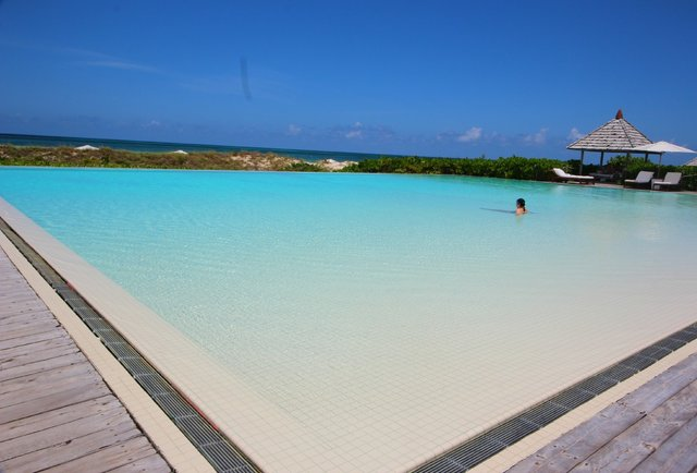 Infinity pool at Parrot Cay by COMO
