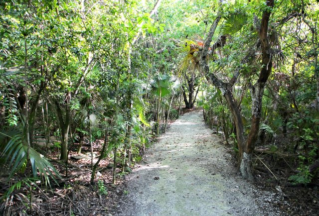 Plantation run at Parrot Cay by COMO