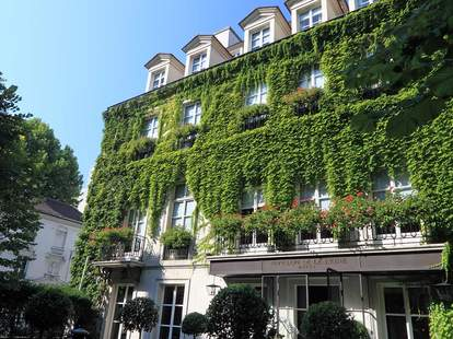 Hotel exterior with ivy