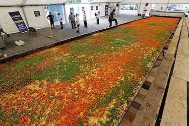 World's Largest Lasagna