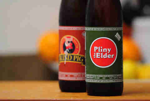 Pliny the Elder photo