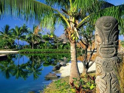 Intercontinental Tahiti Resort palm tree