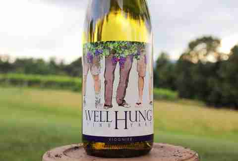 Well Hung wine