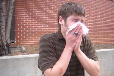 sneezing guy