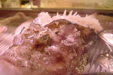 stonefish fried