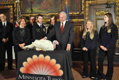 Governor Mark Dayton turkey