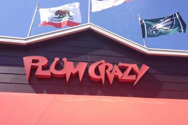 Plum Crazy Pacific Beach Bars San Diego