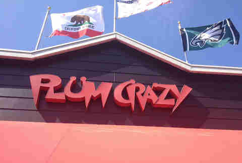 Plum Crazy Pacific Beach Bars San Diego