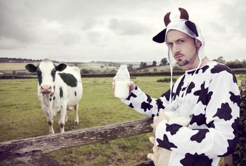Cow and man in milk costume
