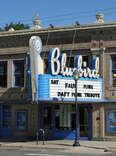 Bluebird marquee