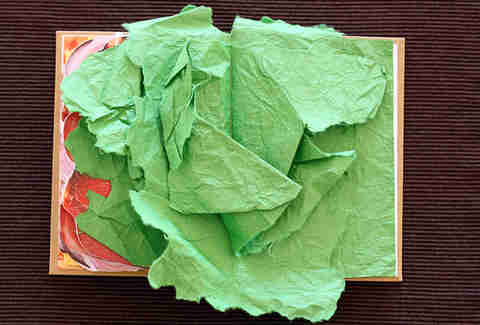 Sandwich book lettuce