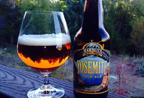 mammoth brewing beer