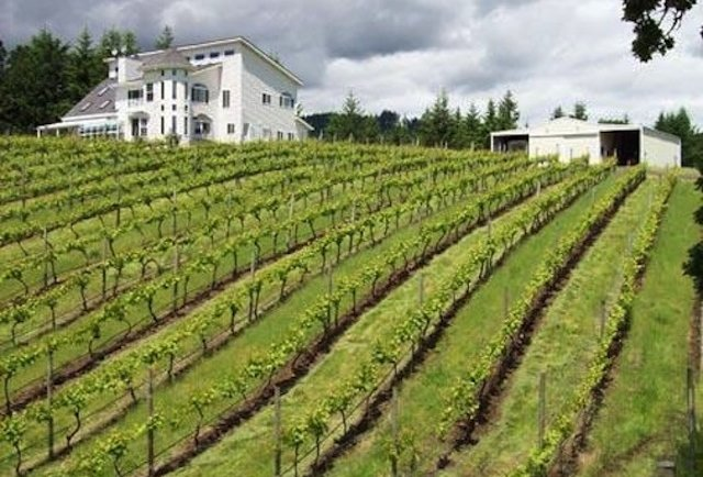 Private vineyards you can almost afford to buy