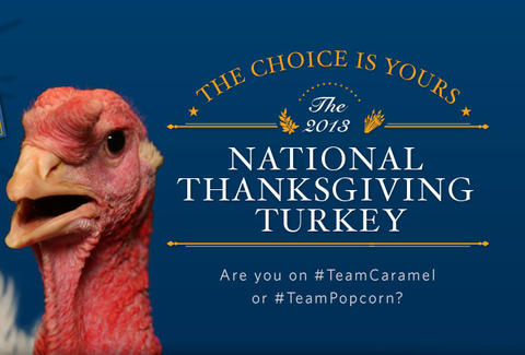 National Thanksgiving turkey