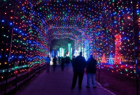 Detroit Zoo - Detroit Zoo's Holiday Cheer - Things To Do In Detroit This Weekend