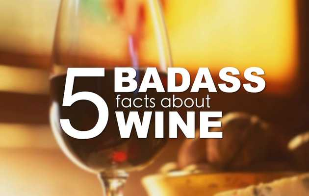 Five badass facts about wine that will make you a dinner party star