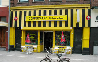 Coffeeshop Mellow Yellow