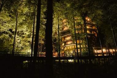 treehouse hotel, night