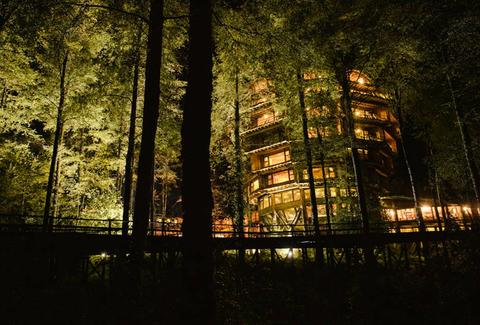 treehouse hotel, night