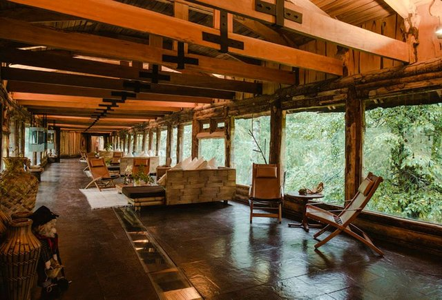 Make like Tarzan (and Jane) in your very own Chilean treehouse
