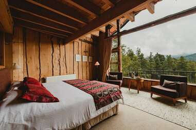 treehouse suite, bed, window