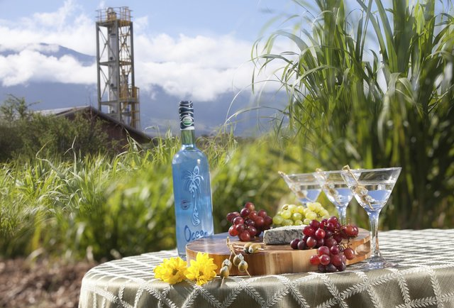 Visit a vodka distillery... in paradise